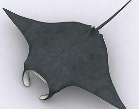3DRT - Sealife - Manta ray animated