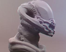3D printable model Traveler Skull