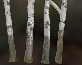 3D asset low-poly 5 White Poplar River Trees