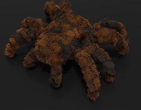 3D model Tarantula rigged and animated