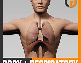 Human Male Body and Respiratory System - Anatomy 3D model
