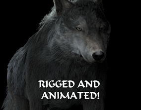 Grey wolf rigged and animated and polar light 3D model