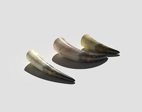 Drinking Horns Pack 3D model