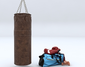 Punch Bag and Boxing Gloves 3D
