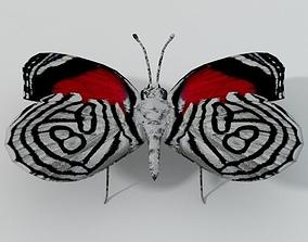 Butterfly 89 3D asset
