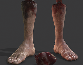 Severed Leg and Human Heart Pack 3D model