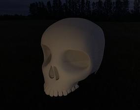 3D Skull model bone