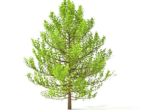 High poly tree 3D model