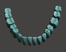 Digital Teeth 3D printable model