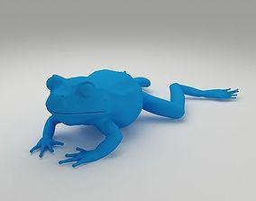Frog 3D Model