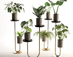 Cigales Plant Stands 3D stands