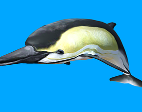 Dolphin 3D Model animated game-ready