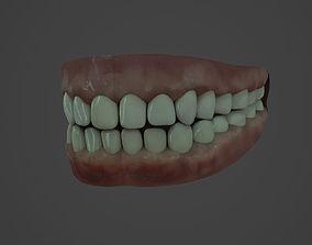 Human teeth 3D asset