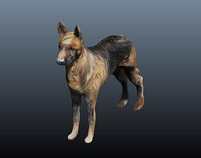 3D model german shepard