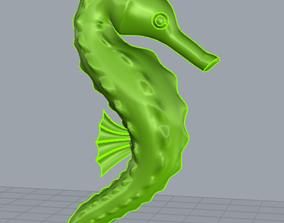 3D cavalluccio marino