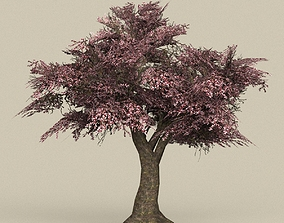 3D asset Game Ready Tree 34