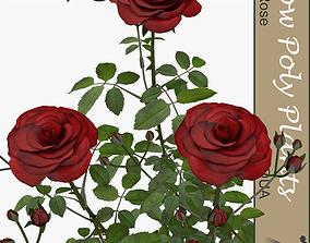 3D model Roses universal plant