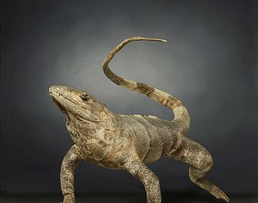 Salamander Lizard Photorealistic Posed 3D asset