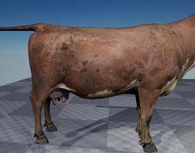 3D asset Cow Model