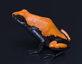 Splashback Poison Frog - Adelphobates galactonotus 3D