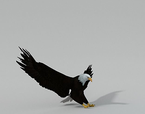 3D asset game-ready Bald Eagle
