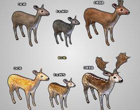 3D model Deer Collection