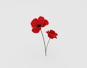 Poppy Flower 3D asset