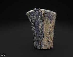 3D model Scanned Old Log High Poly