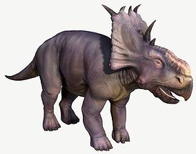 3D asset Pachyrhinosaurus