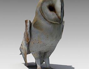 3D model VR / AR ready Barn Owl Animated