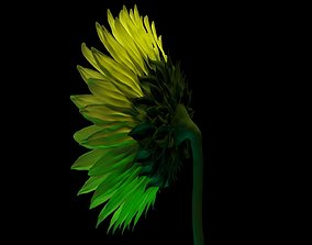 forest Sunflower 3D Model for Gardens and Interior CG