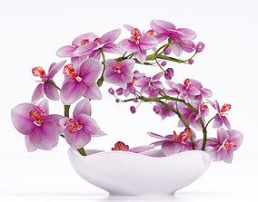 Orchid vase 3D