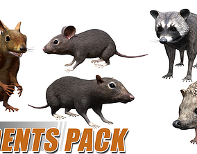 3D asset Rodents pack