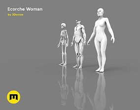 Human model Ecorche woman