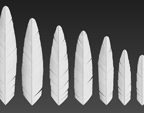 Feather seven different sizes 3D