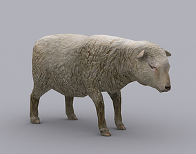 SHEEP GAME READY ANIMATED MODEL 3D asset