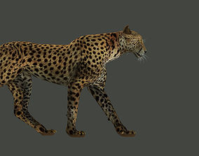 rigged game-ready Leopard Rigged 3D model