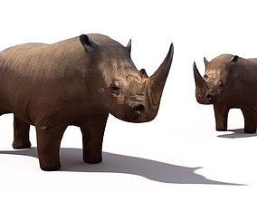 3D asset Rhino
