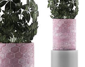vase 3D Plants Collection 110