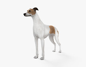 Greyhound HD 3D