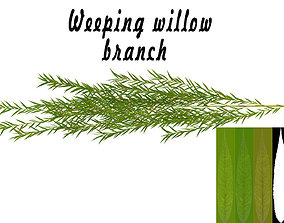Weeping willow branch 3D