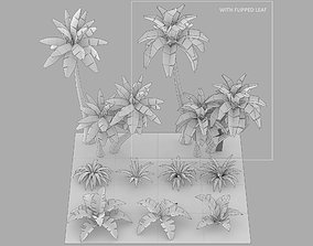 Cartoon Oasis Plants 3D asset