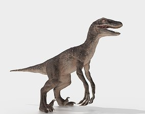 velociraptor 3D asset rigged
