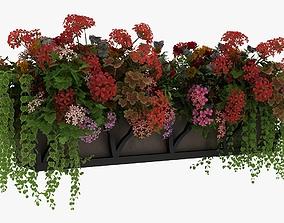 Window Flower Pots 3D model
