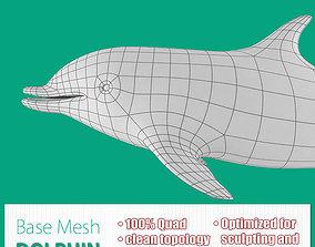 3D asset Dolphin Base Mesh