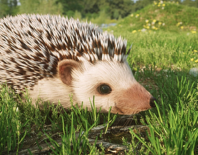 3D model Hedgehog for Vray and Octane