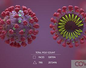 Covid 19 Corona Virus 3D Model organism