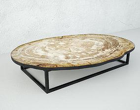 3D Petrified Wood Slice Coffee Table 3