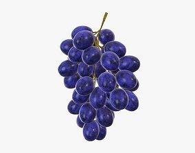 Grapes 04 3D model