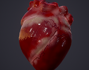 3D model realtime Human Heart